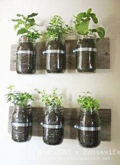 Baby Food Jar Crafts - indoor herb planting