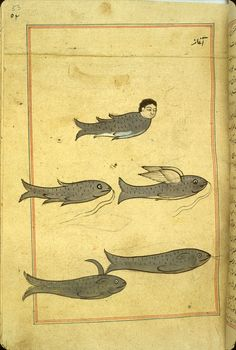 Five mythical sea creatures, including a human-headed fish and a winged fish.
