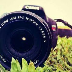 @capturememories20 en instagram 📷🍃
