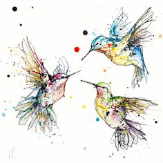 Beautiful bird art of hummingbirds in flight – Animal Planet Watercolor Bird, Watercolor Paintings, Mutterschaft Tattoos, Tatoo Floral, Hummingbird Drawing, Bird Doodle, Bird Drawings, Bird Line Drawing, Canvas Artwork