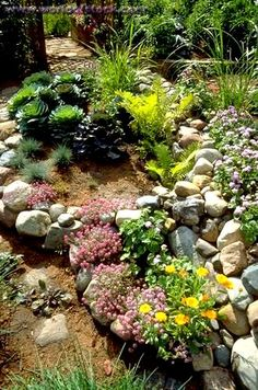 Stock Photo titled: Rock Garden With A Variety Of Shade Plants.  Edina Minnesota USA, unlicensed use prohibited
