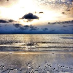 The beach in Falsterbo, Sweden in January, Renaissance, Winter Beach, We Run, Running Away, Scandinavian, Random Stuff, January, Coast, Southern