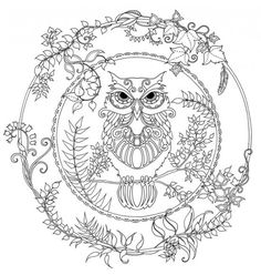 Owl Coloring Page For Adults from Animal Coloring Pages category. Printable coloring pictures for kids you could print and color. Have a look at our collection and print the coloring pictures for free. Adult Coloring Pages, Forest Coloring Pages, Animal Coloring Pages, Coloring Pages To Print, Colouring Pages, Printable Coloring Pages, Free Coloring, Coloring Books, Mandala Coloring