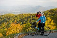 Blue Ridge Parkway in Virginia Shenandoah National Park, Shenandoah Valley, Smoky Mountain National Park, Virginia Vacation, Hiking In Virginia, Virginia National Parks, Virginia Is For Lovers, Tourism Website, Blue Ridge Parkway