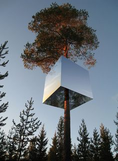 Designed by Tham & Videgård Arkitekter , Tree Hotel is a shelter up in the trees; a lightweight aluminium structure hung around a tree trunk, a meters box clad in mirrored glass. House Of Mirrors, Glamping, Architecture Cool, Treehouse Hotel, Treehouse Kids, Backyard Treehouse, Cool Tree Houses, Tree House Designs, Unique Trees