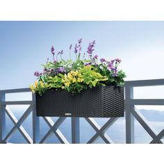 Lechuza 20 x 7 x 7 in. Balconera Cottage Planter, Granite with Brackets - Black Deck Railing Planters, Patio Planters, Deck Railings, Planter Pots, Rose Plant Care, Cottage Patio, Contemporary Planters, Self Watering Planter, Garden Deco