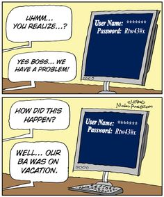 Humor: Do we really need Business Analysts?