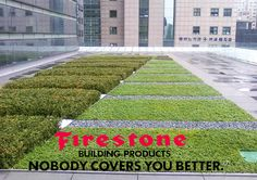 Source-a-id - FIRESTONE / LA TOITURE VEGETALISEE Commercial Roofing, Building Products, Sidewalk, Side Walkway, Walkway, Walkways, Pavement