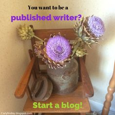So you want to become a published writer? Start a blog!  http://carlyfindlay.blogspot.com.au/2015/01/you-want-to-become-published-writer.html