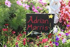 The author discusses the importance of memorial gardens in helping to soothe loss, giving gardens Sandy Hook and Grand Traverse Children Garden as Memorial Gardens, Garden Posts, Memories, Memoirs, Remember This