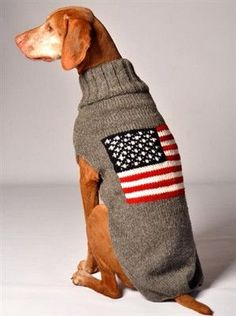 American Flag Dog Sweater by Chilly Dog