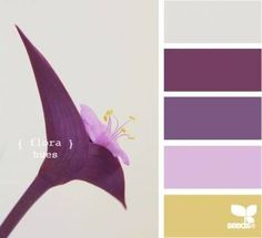69 Ideas For Baby Bedroom Purple Design Seeds