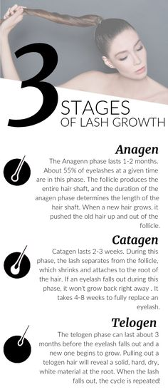 Understanding the hair growth cycle is essential to Lash Artists. It'll help you answer many of your client's questions, and the knowledge will help you push growth serum sales too! This graphic is to give you all the information you need! Pick up the Las Eyelash Enhancing Serum, Eyelash Extension Training, Eyelash Growth Serum, Eyebrow Growth, Big Lashes, Hair Growth Cycle, Stop Hair Loss, Natural Lashes, Natural Hair