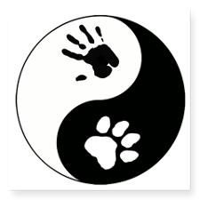 """Big Cat Therian Ying Yang Square Sticker 3"""" x 3"""""""