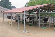 FCP Mare Motels offer long-lasting durability, as well as the quality, value and selection our customers require. Horse Shelter, Horse Rescue, Round Pens For Horses, Cattle Barn, Horse Corral, Horse Arena, Small Barns, Horse Barn Plans, Run In Shed