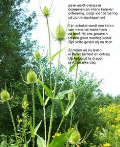 gave. Gedichten http://www.gedichtensite.nl. Afbeeldingen met gedichten: http://www.fotogedichten.nl