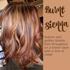 Burnt sienna - my new hair color, just a bit darker Hair Color And Cut, Haircut And Color, Darker Hair Color Ideas, Reddish Hair Color, 2 Tone Hair Color, Weave Hair Color, Red Brown Hair Color, Fall Hair Colors, Summer Colors