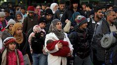 Vino y girasoles...: Refugiados: El daño ya está hecho.