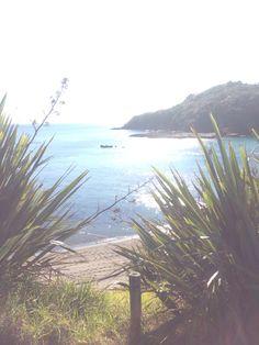 Summer NZ