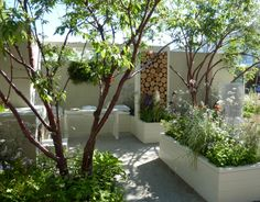 Thrive's  garden at Chelsea 2010 won gold for its stylish and contemporary design for those who find gardening physically challenging