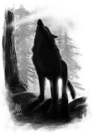 Resultado de imagem para black wolf drawing from front