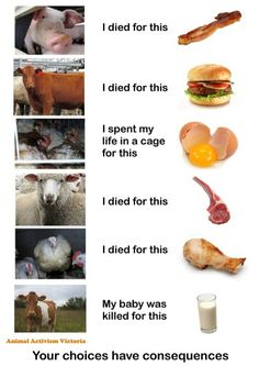 your choices have consequences, choose #vegan