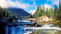 Beautiful Waterfalls Rivers Forests Flowing Falls Nature Animated Waterfall Wallpaper Download