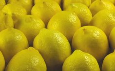 Free download lemon fruit hd wallpaper for android