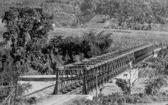 El puente ferroviario de Cambalache - ¿Merece ser preservado? | Redescubriendo a Puerto Rico