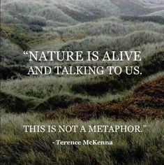"""The post """"Wild Nature Quotes Mother Earth Ideas"""" appeared first on Pink Unicorn quotes Mother Mother Nature Quotes, Mother Quotes, Terence Mckenna, Pantheism, One With Nature, Wild Nature, Nature Nature, Save Nature, Nature Study"""