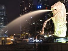 Singapore on budget: 150 USD for 4 days