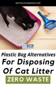 Plastic Bag Alternatives For Disposing Of Cat Litter. One of the most eco-friendly ways to dispose of cat litter is to compost it. The second most eco-friendly option is to use...Read more here! #catcare #ecofriendly #zerowaste #cats Cat Health Care, Cat Care Tips, Healthy Pets, Cat Behavior, Happy Animals, Compost, Dog Cat, Eco Friendly, Plastic