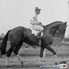 Nashua with Eddie Acaro up. I love how long the jockeys rode back then. (their stirrup length)