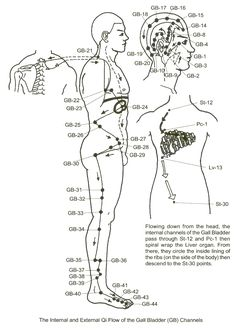 Here Is The Gallbladder Meridian. As You Can See, This Pathway - - gif Here Is The Gallbladder Meridian. As You Can See, This Pathway - - gif Acupuncture Points, Acupressure Points, Qi Gong, Mudras, Traditional Chinese Medicine, Massage Therapy, Healing, Decision Making, Meridian Points