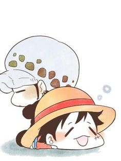 cute luffy and law