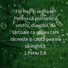 1 Petru 5:8 Proverbs 13, Bless The Lord, Spiritual Warfare, My Prayer, Real Life, Believe, Prayers, Spirituality, Inspirational Quotes