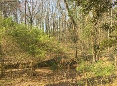 View 4 photos of this $29,500, vacant land zoned 1.17 ac lot located at 3518 Hulsey Rd, Cumming, GA 30041. MLS # 5859220. Parcel #225029.  1.17 acre lot in t...