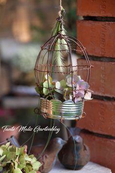 Dosen Upcycling Vogelkäfig Recycle Cans, Diy Recycle, Recycling, Diy Upcycling, Upcycled Crafts, Recycled Art, Endangered Plants, Gravel Garden, Diy Garden Projects