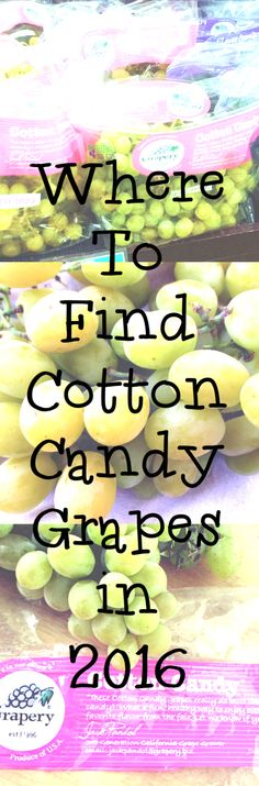 Where to Buy Cotton Candy Grapes in 2016 Cotton Candy Grapes, Eat The Rainbow, Orange Fruit, Trends, Health Facts, Vegetables, Sumo, Random, Food