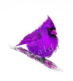 Valda Fitzpatrick Purple bird absolutearts.com