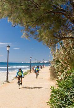 Seafront. A 5-mile promenade to enjoy walking, biking ...what do you fancy? Marbella, Spain.