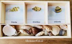 Mušle triedenie Montessori, Place Cards, Place Card Holders, Kids, Young Children, Boys, Children, Boy Babies, Child
