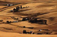 Farmland in eastern Washington