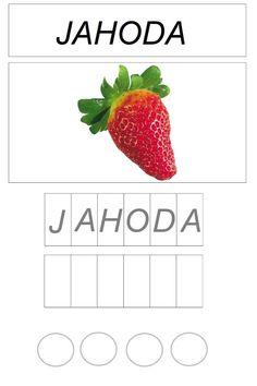 Montessori Toddler, Toddler Activities, Flora, Strawberry, Nursery, Fruit, Vegetables, Plants