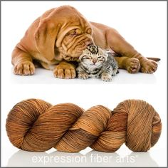 Expression Fiber Arts, Inc. - UNCONDITIONAL LOVE 'RESILIENT' SUPERWASH MERINO SOCK yarn -  - awwwwwww! Too cute for words. This colorway reminds me of sweet, heart-warming puppy cuddles and kisses and is a rich, semi-solid raw umber shade.