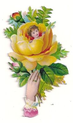 Victorian Die-cut Scrap of Hand holding Large Rose (Little Girl inside) -ca 1890
