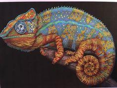 Chameleon 3 By Jo W ColouringAdult ColoringColoring BooksInkChange