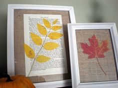 Pressed leaves on book pages or burlap
