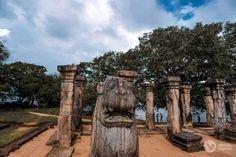 Roteiro de 16 dias no Sri Lanka (a minha viagem)   Alma de Viajante Sri Lanka, Plants, The Journey, Wayfarer, Travel, Plant, Planets