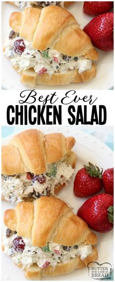 Easy Chicken Salad recipe that's the BEST I've ever tasted! The simple dressing really makes it perfect. Chicken Salad recipe made with diced chicken plain yogurt apples grapes celery cucumber raisins and more! Great as chicken salad sandwi Homemade Chicken Salads, Chicken Salad Recipes, Yogurt Chicken Salad, Chicken Salad Sandwiches, Chicken Salad Croissant, Chicken Salad Dressing, Cucumber Dressing, Croissant Recipe, Healthy Sandwiches